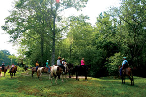 Blue Ridge Mountain Trail Rides