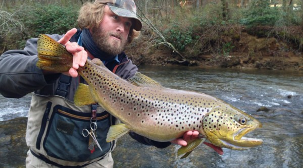 Trout fishing in fannin county georgia ac living magazine for Fly fishing north georgia