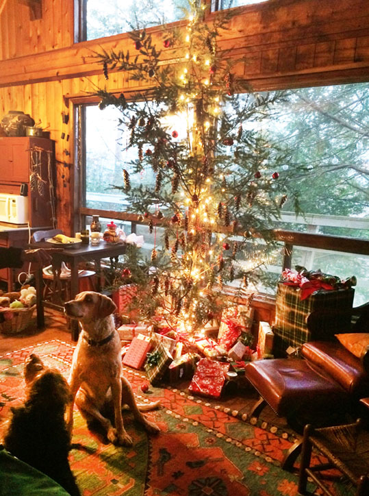 Natalie and Maxine Christmas at the Cabin 2016