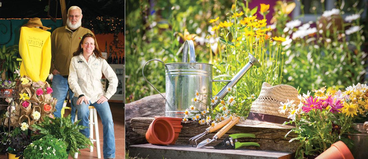 Mountain Ridge Garden Shop & Johnson Nursery– A gardener's Dream team