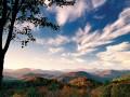 Georgia ForestWatch