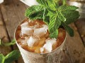 Traditional Mint Julep